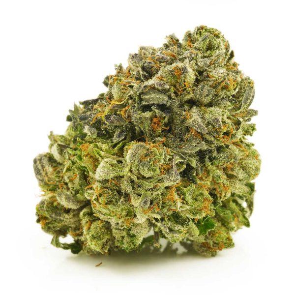Buy Cannabis Gas Leak AAAA at MMJ Express Online Shop
