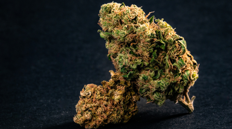 The Ultimate Guide to Types of Cannabis Strains