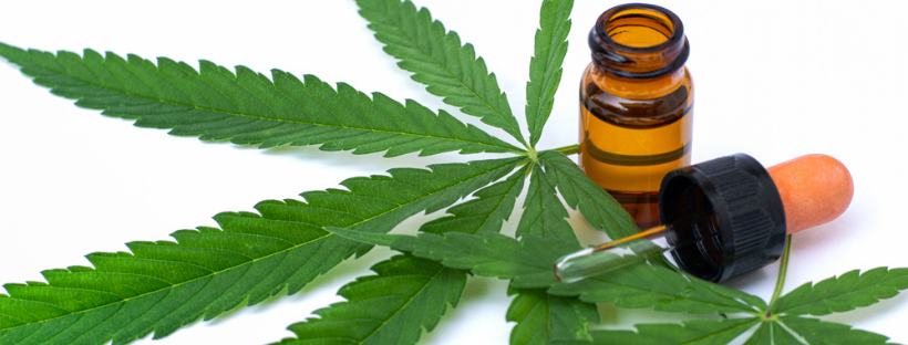 CBD Tinctures Are Safe To Use