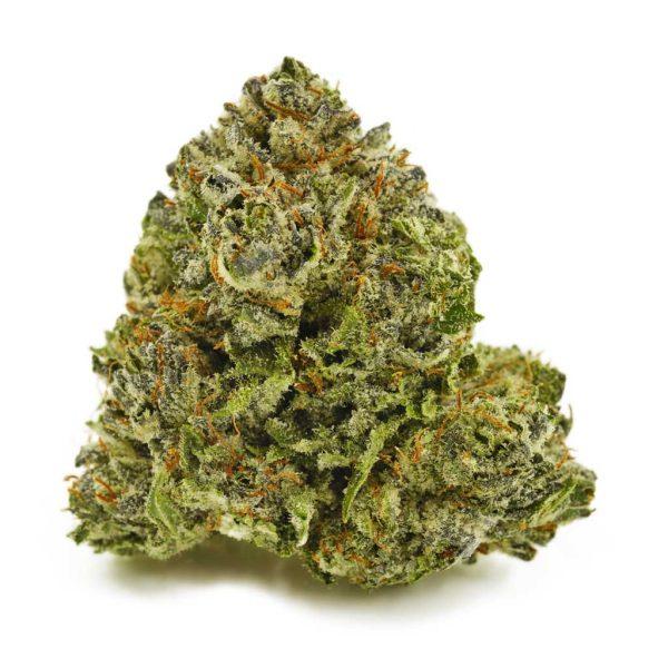 Buy Cannabis Dosi Cake AAAA at MMJ Express Online Shop
