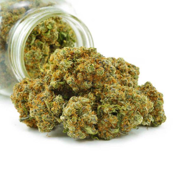 Buy Cannabis Purple Monkey Ball's AAAA at MMJ Express Online Shop