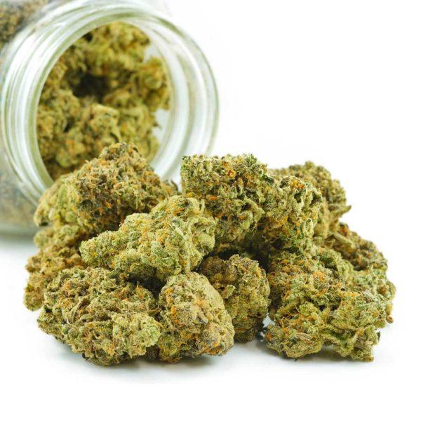 Buy Cannabis Dolato AAAA at MMJ Express Online Shop