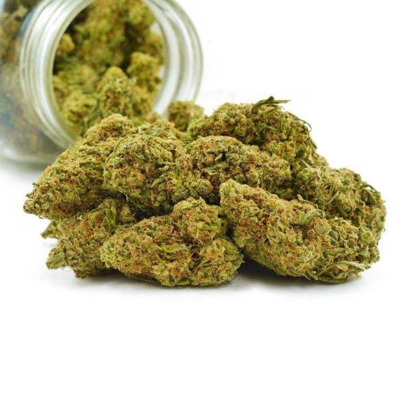 Buy Cannabis Lemon Head OG AA at MMJ Express Online Shop