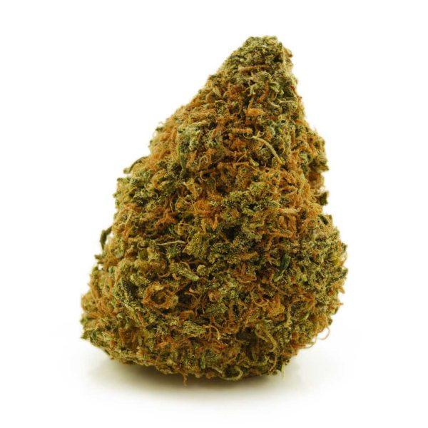 Buy Cannabis Sunshine Daydream AA at MMJ Express Online Shop