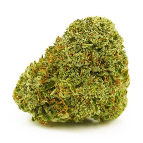 Buy Cannabis Super Sour Diesel AAAA at MMJ Express Online Shop