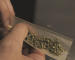 How to Roll a Joint in 5 Steps