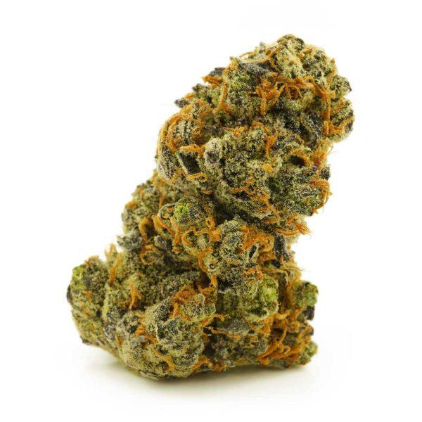 Buy Cannabis Dragon Berry AAAA at MMJ Express Online Shop