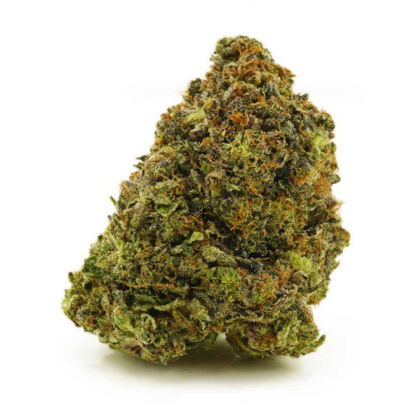 Buy Cannabis Blue Gelato AAAA Indica Hybrid at MMJ Express Online Shop