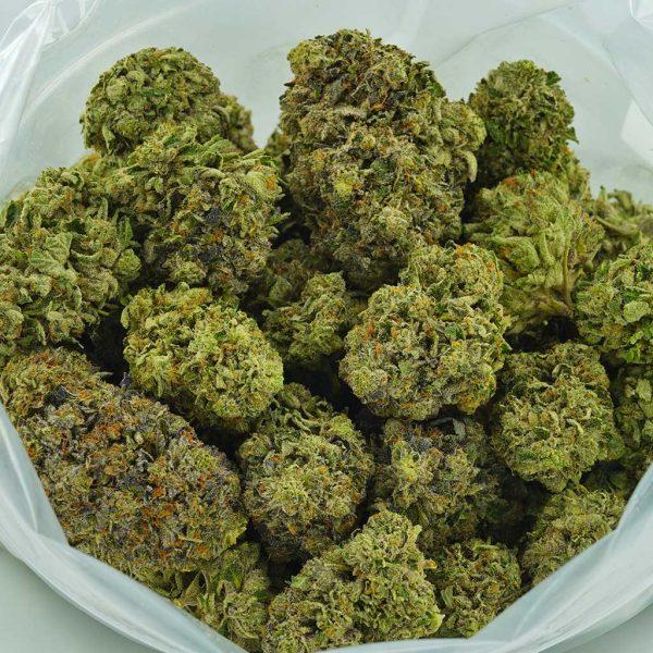Buy Cannabis Rockstar Tuna AAAA at MMJ Express Online Shop