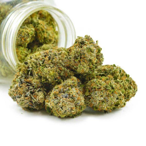 Buy Cannabis Purple Pug's Breath AAAA at MMJ Express Online Shop