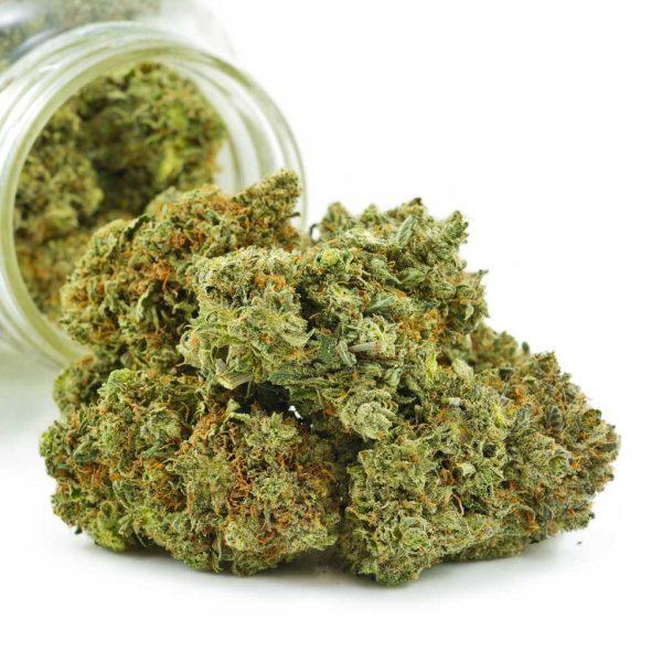 Buy Cannabis Lemon Skunk X Maui Wowie AAAA at MMJ Express Online Shop