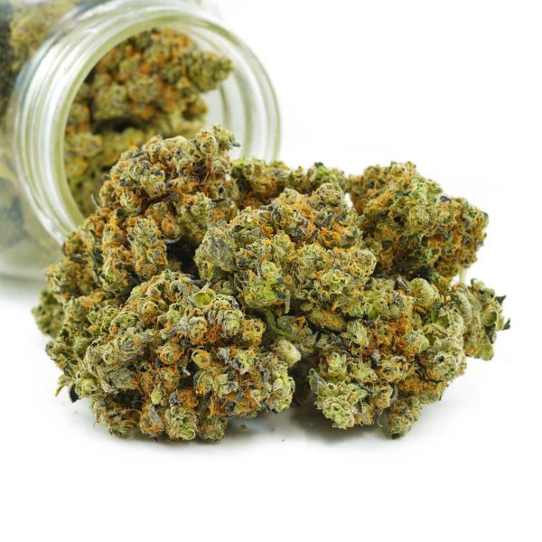 Buy Cannabis Russian Doll AAAA at MMJ Express Online Shop