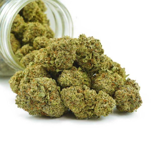Buy Cannabis Red Dragon AA at MMJ Express Online Shop
