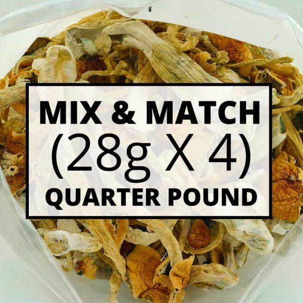 mushroom mix match qp
