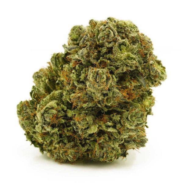 Buy Cannabis Muay Thai AAAA at MMJ Express Online Shop