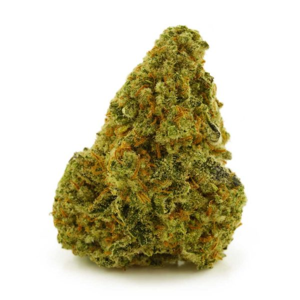 Buy Cannabis Gorilla Zookies AAAA+ Hybrid Craft at MMJ Express Online Shop