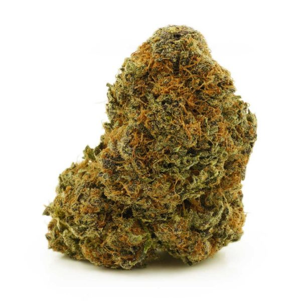 Buy Cannabis Cherry Stomper AA at MMJ Express Online Shop