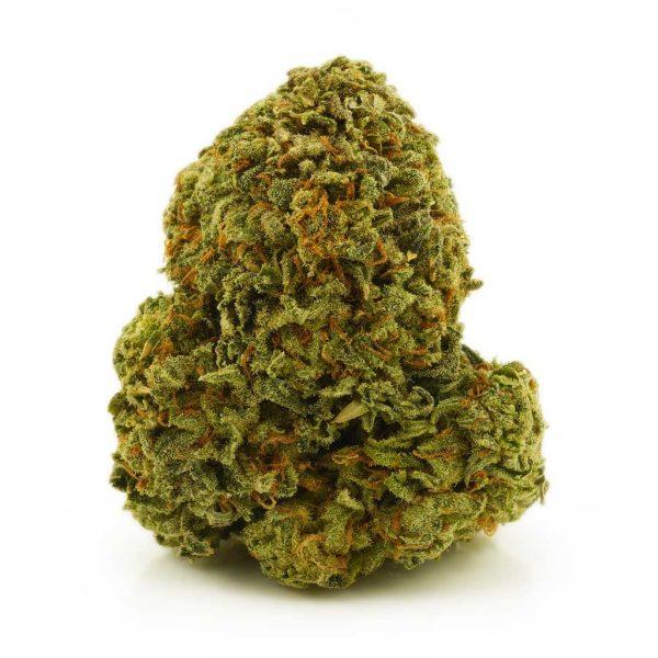 Buy Cannabis Rockstar Kush AA at MMJ Express Online Shop