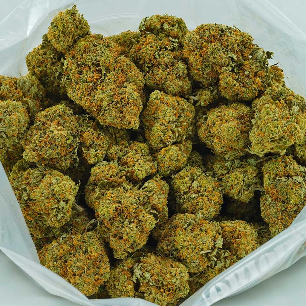 Buy Cannabis Pink Punch AA at MMJ Express Online Shop