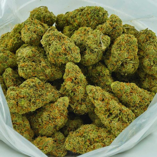 Buy Cannabis Galactic Jack AAAA at MMJ Express Online Shop