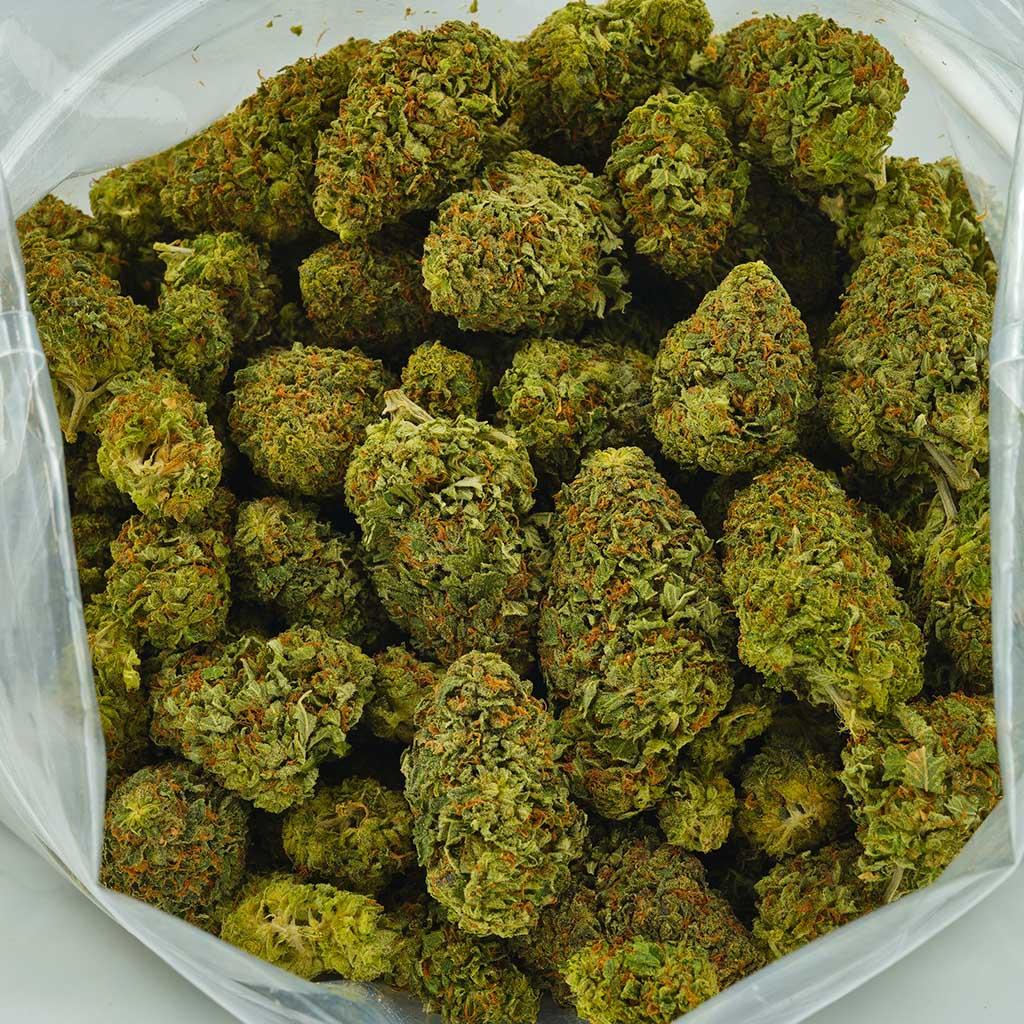 Buy Cannabis OG Kush AA at MMJ Express Online Shop
