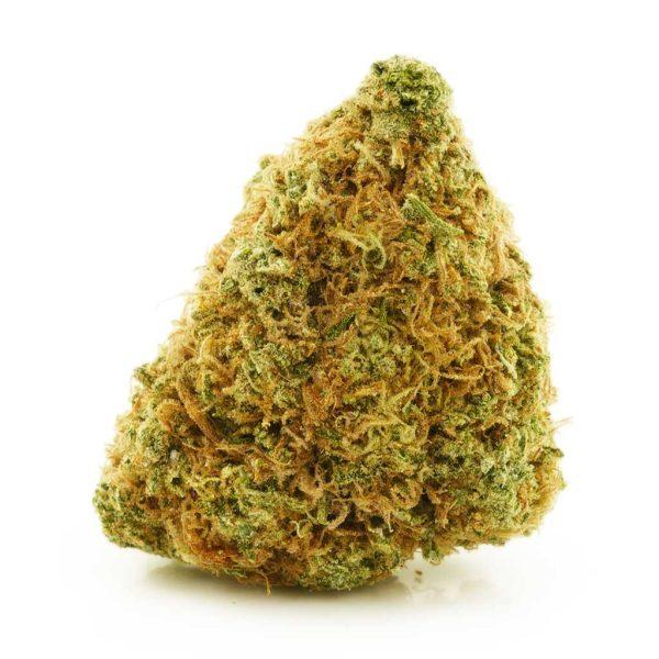 Buy Cannabis Amnesia AA at MMJ Express Online Shop
