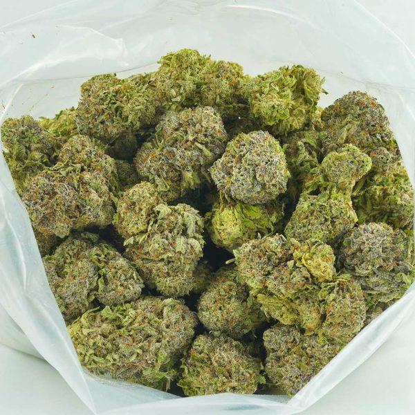 Buy Cannabis Northern Wreck AAAA at MMJ Express Online Shop