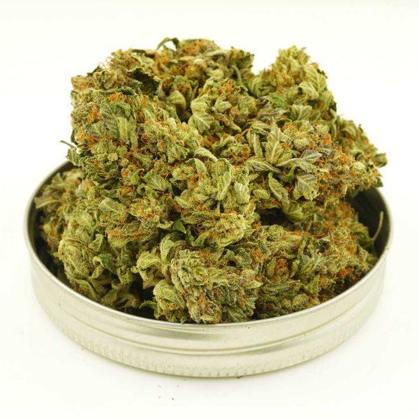 Buy Cannabis Jet Fuel AAA at MMJ Express Online Shop