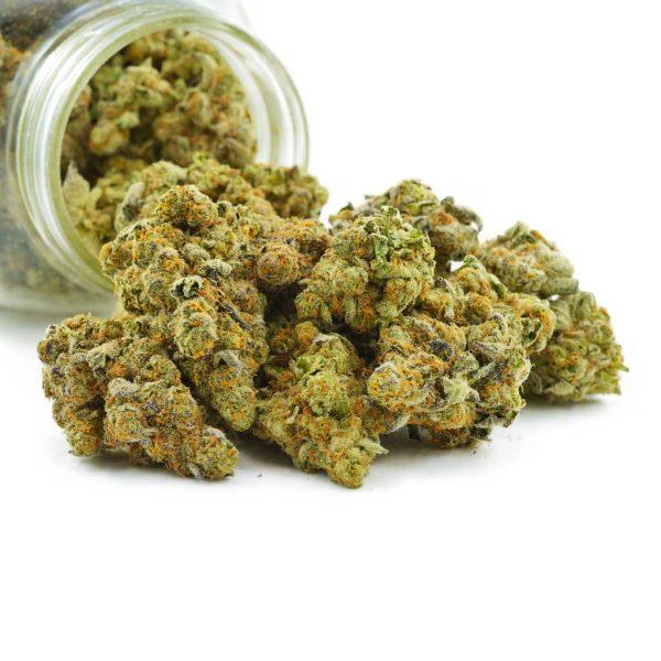 Buy Cannabis Super Lemon Haze AAAA+ Craft at MMJ Express Online Shop