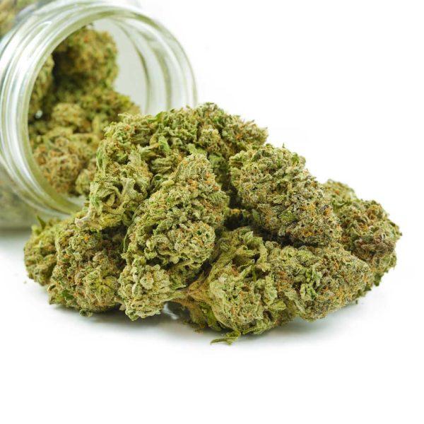 Buy Cannabis Blue Gelato AA at MMJ Express Online Shop