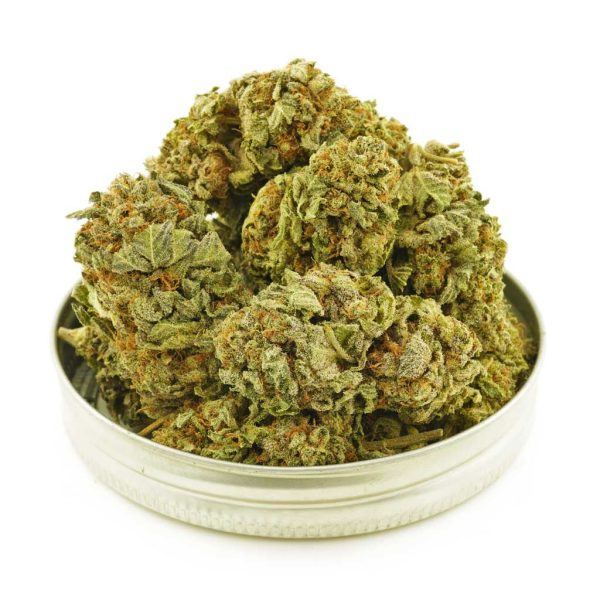 Buy Cannabis UBC Chemo AA at MMJ Express Online Shop