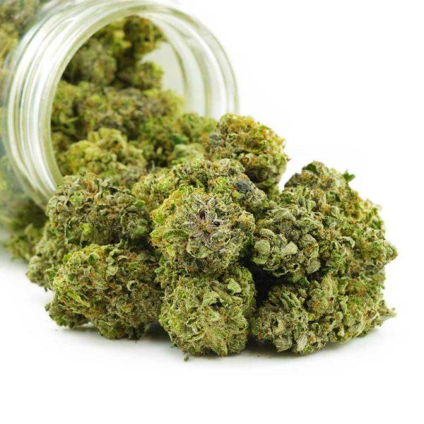 Buy Cannabis Supermax OG AAA at MMJ Express Online Shop