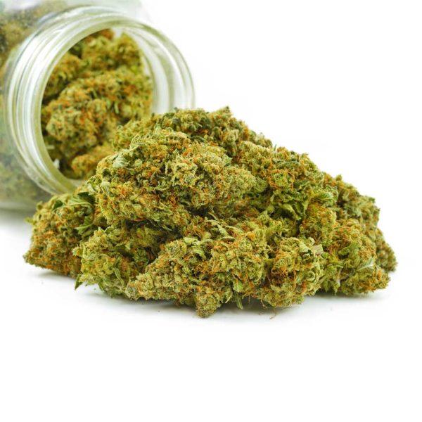 Buy Cannabis Dosi Punch AAA at MMJ Express Online Shop
