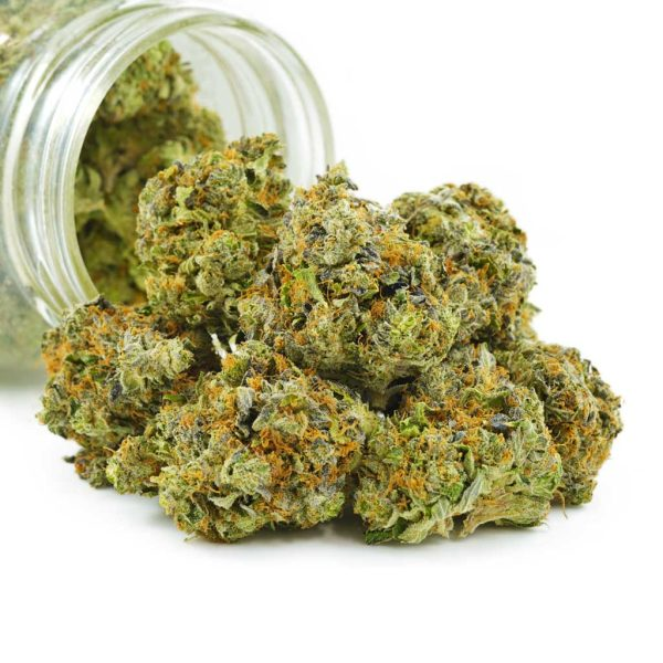 Buy Cannabis White Death AAAA at MMJ Express Online Shop